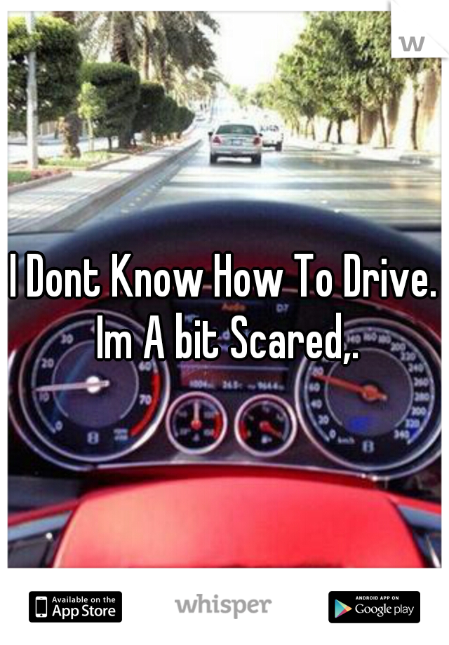 I Dont Know How To Drive. Im A bit Scared,.