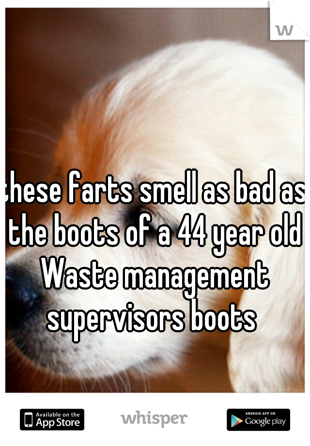 these farts smell as bad as the boots of a 44 year old Waste management supervisors boots