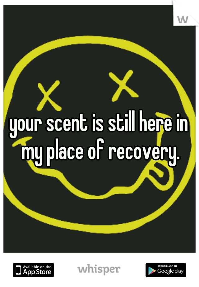 your scent is still here in my place of recovery.