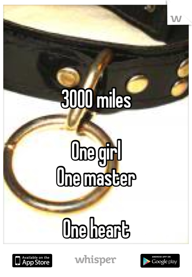 3000 miles  One girl One master  One heart
