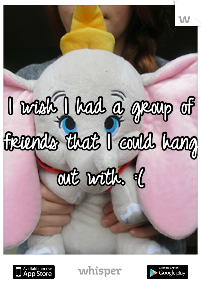 I wish I had a group of friends that I could hang out with. :(