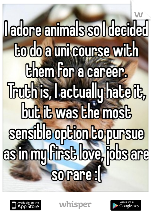 I adore animals so I decided to do a uni course with them for a career.  Truth is, I actually hate it, but it was the most sensible option to pursue as in my first love, jobs are so rare :(