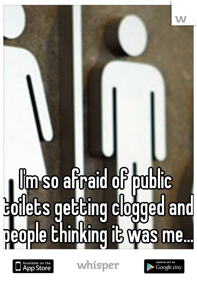I'm so afraid of public toilets getting clogged and people thinking it was me...