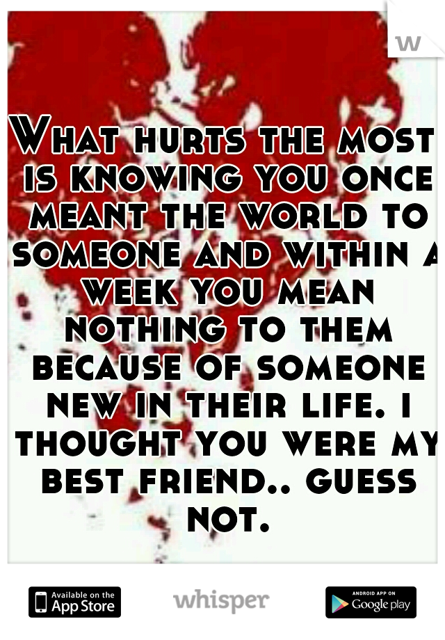 What hurts the most is knowing you once meant the world to someone and within a week you mean nothing to them because of someone new in their life. i thought you were my best friend.. guess not.