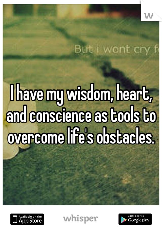 I have my wisdom, heart, and conscience as tools to overcome life's obstacles.