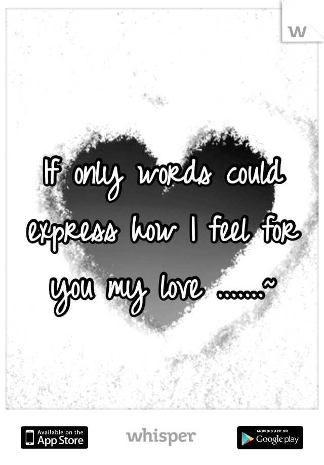 If only words could express how I feel for you my love .......~