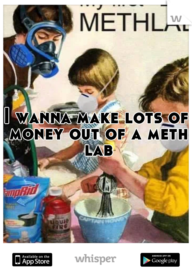 I wanna make lots of money out of a meth lab