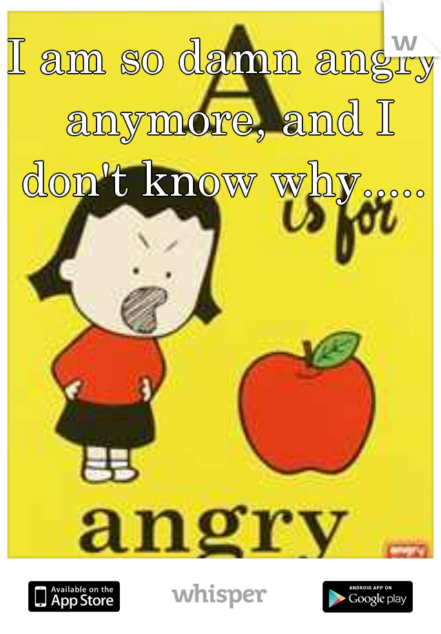I am so damn angry anymore, and I don't know why.....