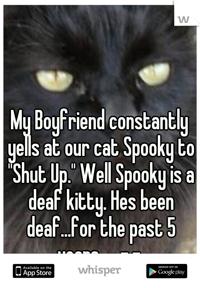 """My Boyfriend constantly yells at our cat Spooky to """"Shut Up."""" Well Spooky is a deaf kitty. Hes been deaf...for the past 5 years..... -.-"""