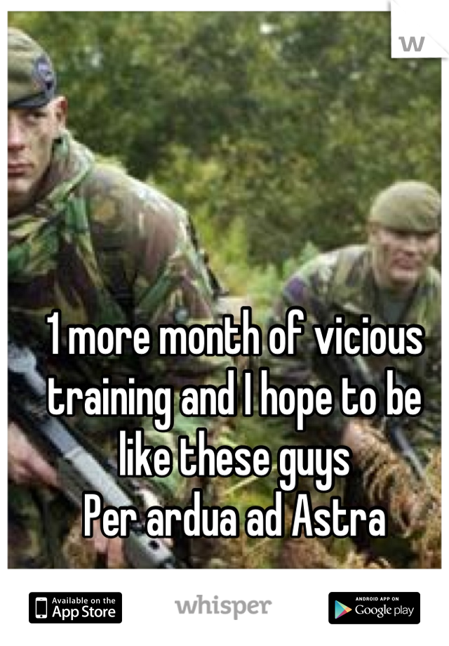 1 more month of vicious training and I hope to be like these guys Per ardua ad Astra