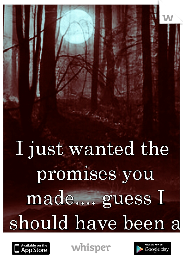I just wanted the promises you made.... guess I should have been a little more like her.