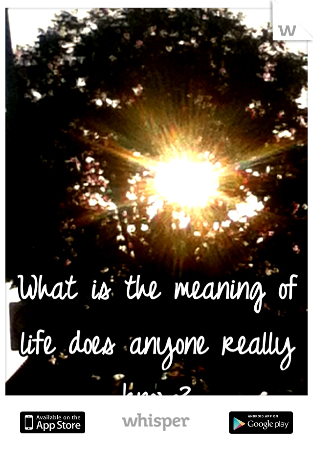 What is the meaning of life does anyone really know?