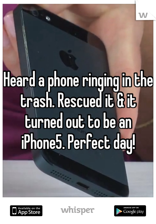 Heard a phone ringing in the trash. Rescued it & it turned out to be an iPhone5. Perfect day!