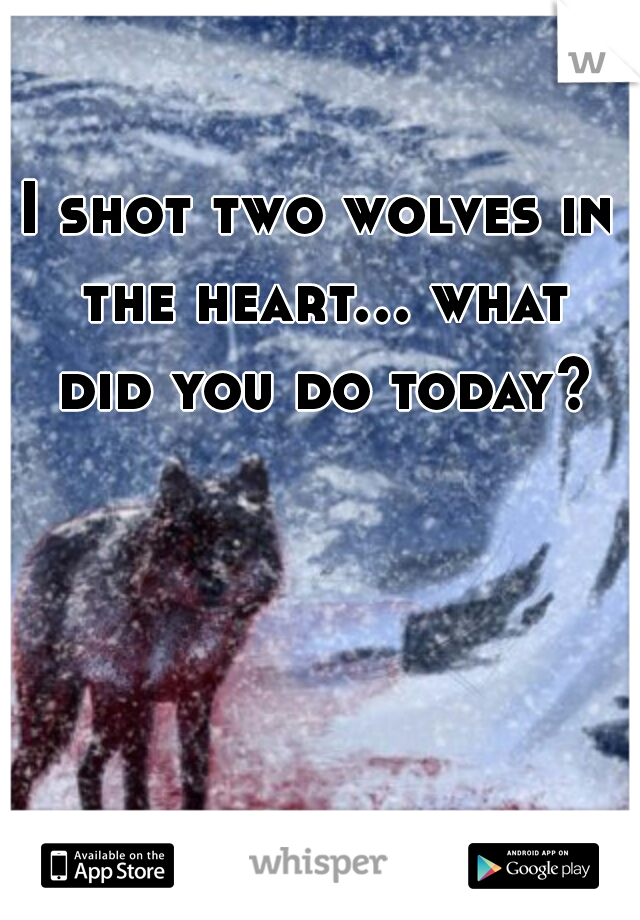 I shot two wolves in the heart... what did you do today?