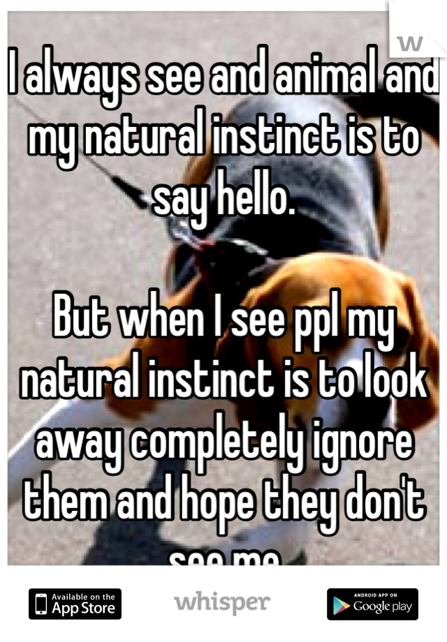 I always see and animal and my natural instinct is to say hello.  But when I see ppl my natural instinct is to look away completely ignore them and hope they don't see me