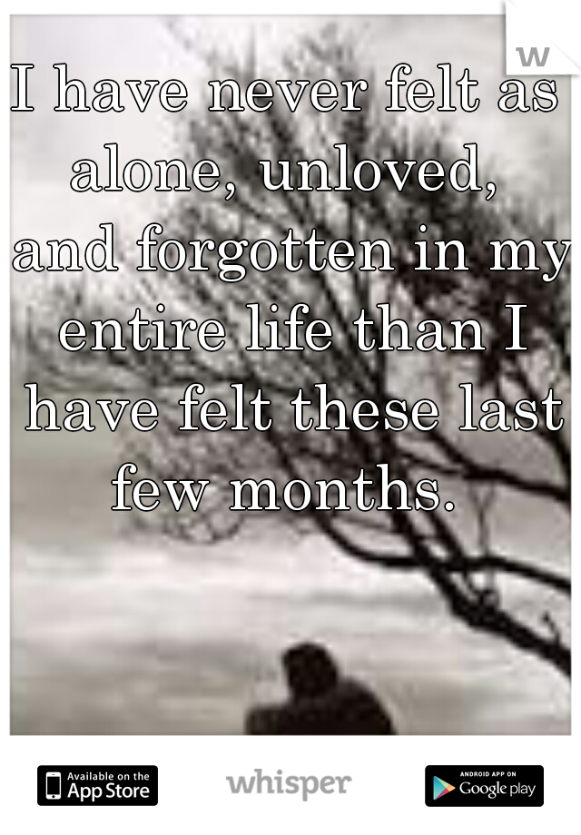 I have never felt as alone, unloved,  and forgotten in my entire life than I have felt these last few months.