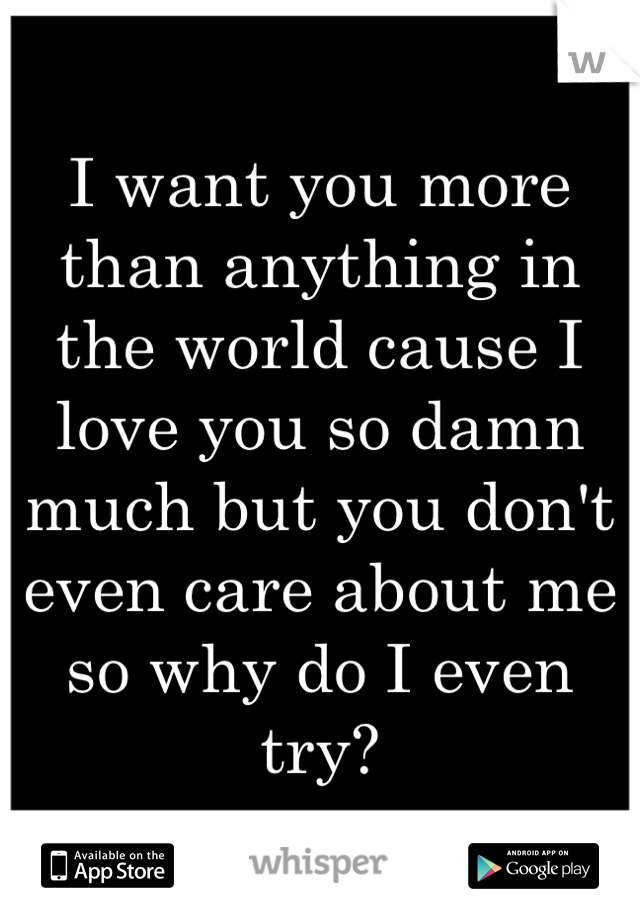 I want you more than anything in the world cause I love you so damn much but you don't even care about me so why do I even try?