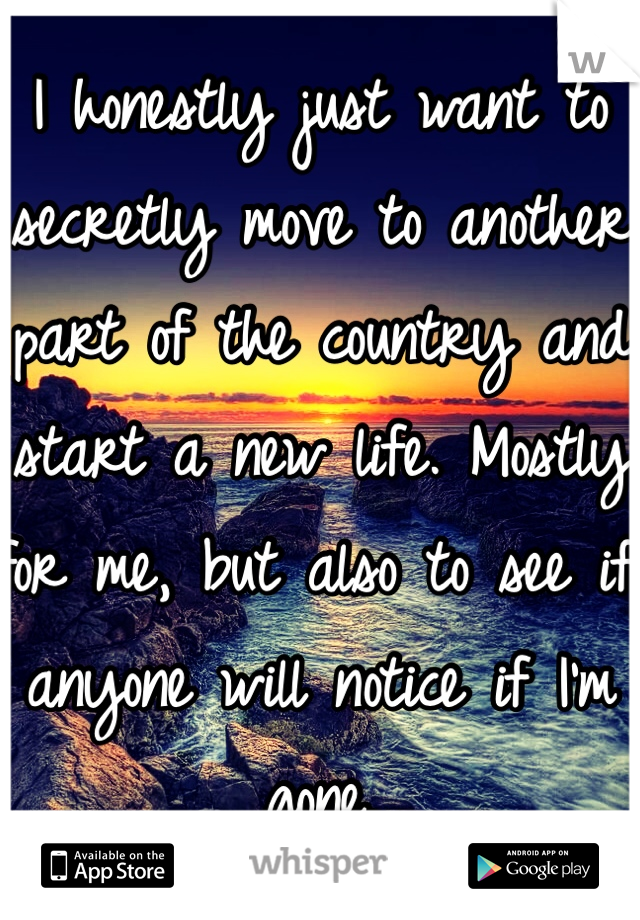 I honestly just want to secretly move to another part of the country and start a new life. Mostly for me, but also to see if anyone will notice if I'm gone.