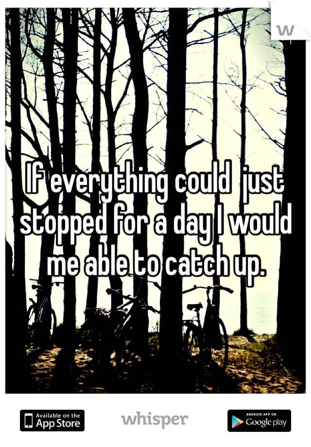 If everything could  just stopped for a day I would me able to catch up.