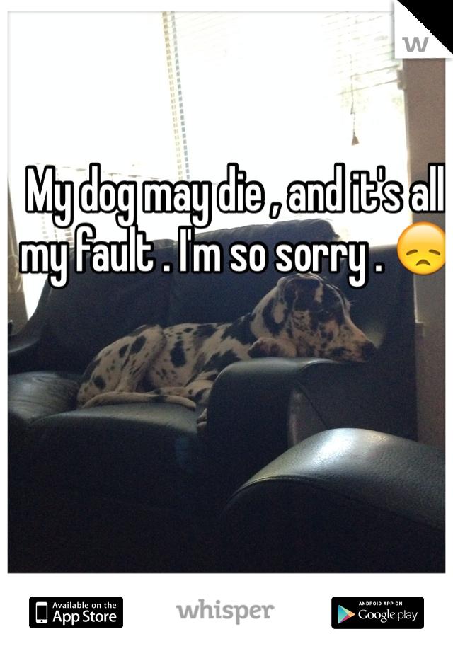 My dog may die , and it's all my fault . I'm so sorry . 😞
