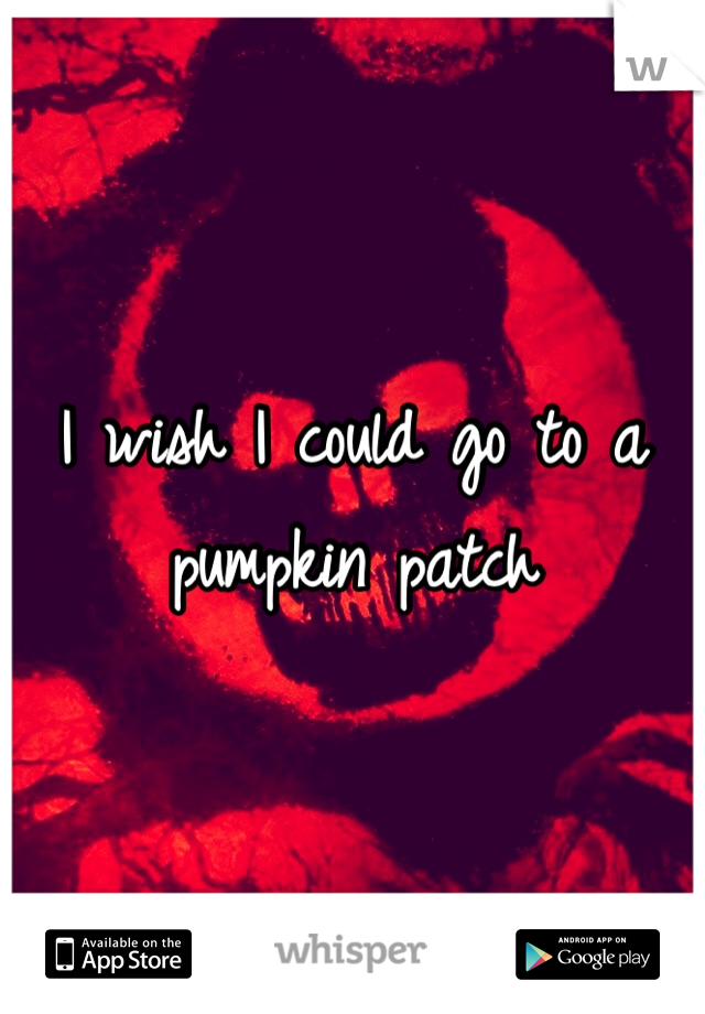 I wish I could go to a pumpkin patch