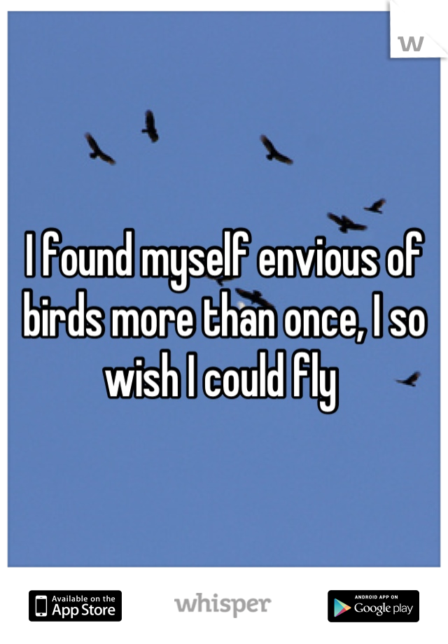 I found myself envious of birds more than once, I so wish I could fly