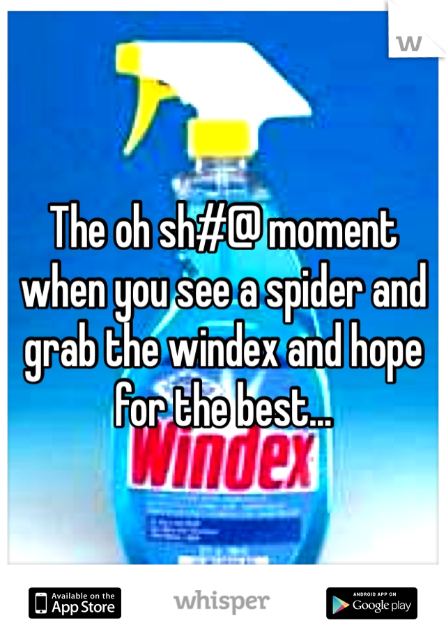 The oh sh#@ moment when you see a spider and grab the windex and hope for the best...