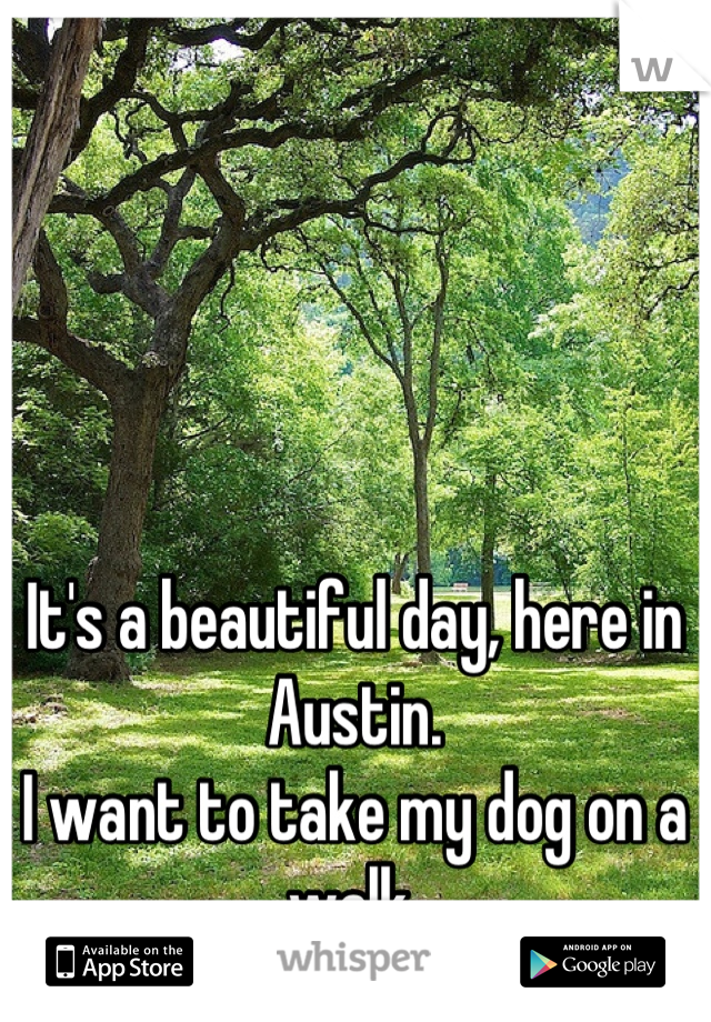 It's a beautiful day, here in Austin. I want to take my dog on a walk.