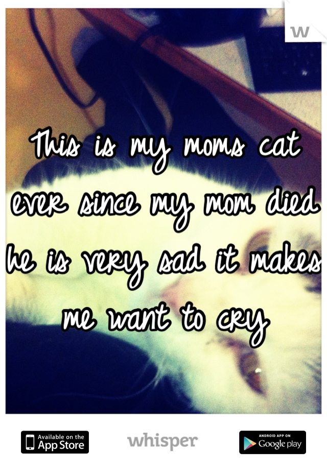 This is my moms cat ever since my mom died he is very sad it makes me want to cry