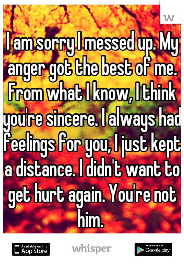 I am sorry I messed up. My anger got the best of me. From what I know, I think you're sincere. I always had feelings for you, I just kept a distance. I didn't want to get hurt again. You're not him.