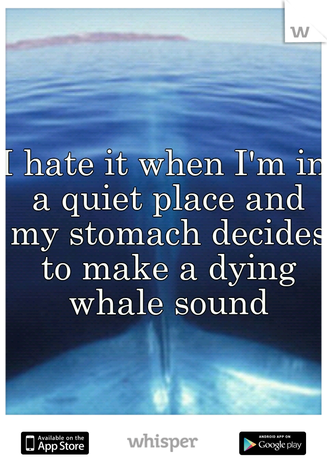 I hate it when I'm in a quiet place and my stomach decides to make a dying whale sound