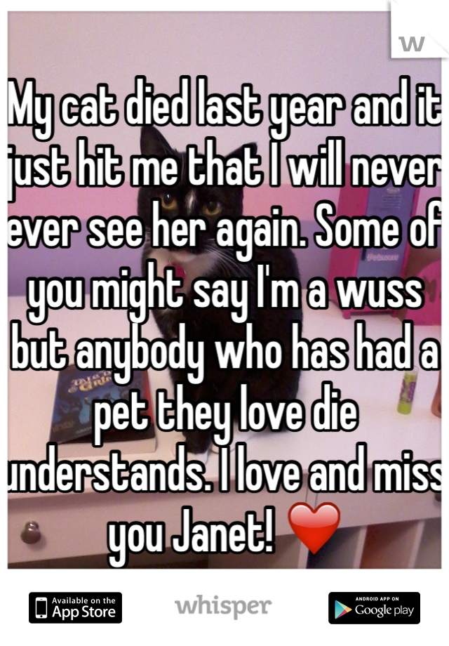 My cat died last year and it just hit me that I will never ever see her again. Some of you might say I'm a wuss but anybody who has had a pet they love die understands. I love and miss you Janet! ❤️