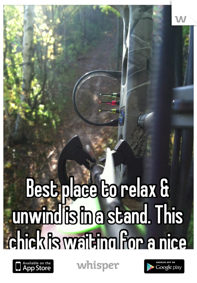 Best place to relax & unwind is in a stand. This chick is waiting for a nice buck to walk by.