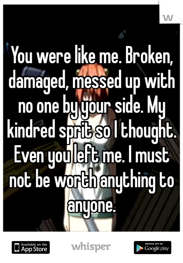 You were like me. Broken, damaged, messed up with no one by your side. My kindred sprit so I thought. Even you left me. I must not be worth anything to anyone.