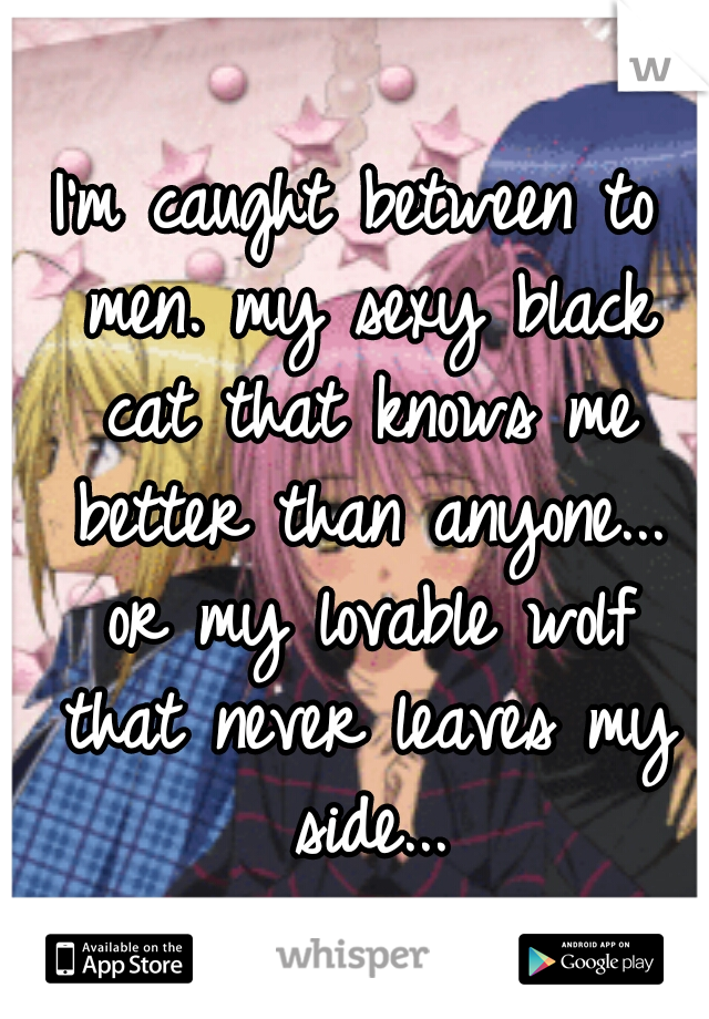 I'm caught between to men. my sexy black cat that knows me better than anyone... or my lovable wolf that never leaves my side...