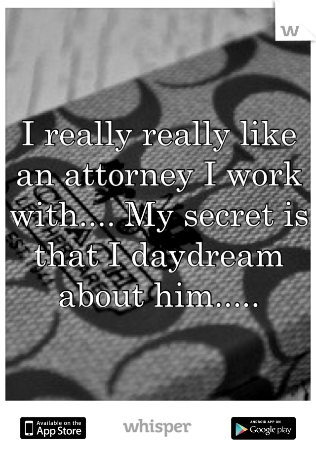 I really really like an attorney I work with.... My secret is that I daydream about him.....