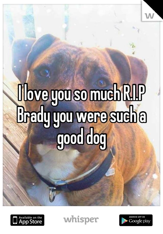 I love you so much R.I.P Brady you were such a good dog