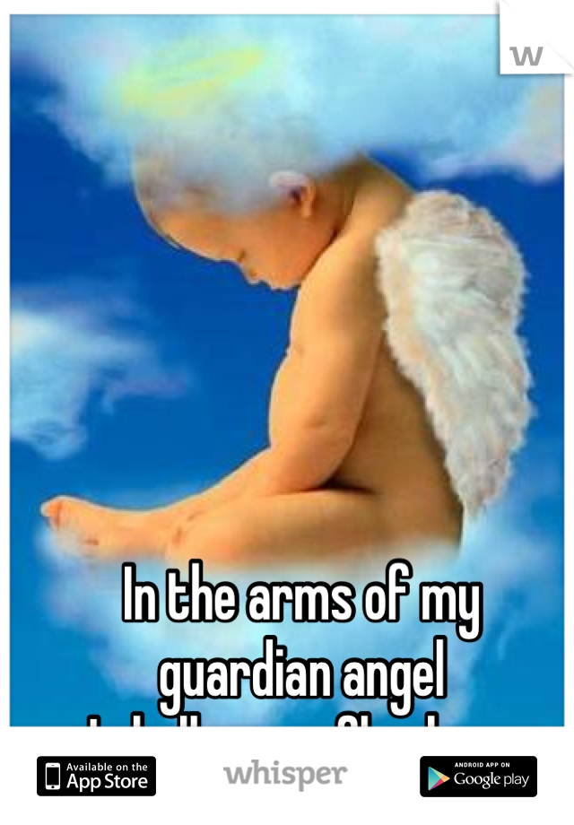 In the arms of my  guardian angel  I shall never fly alone.