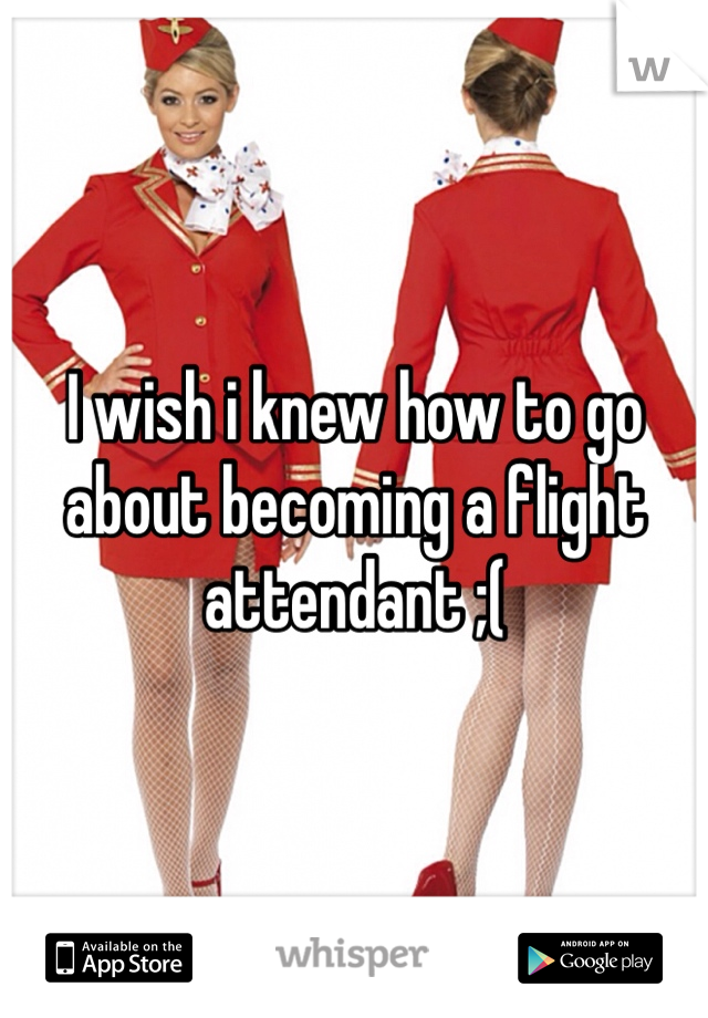 I wish i knew how to go about becoming a flight attendant ;(
