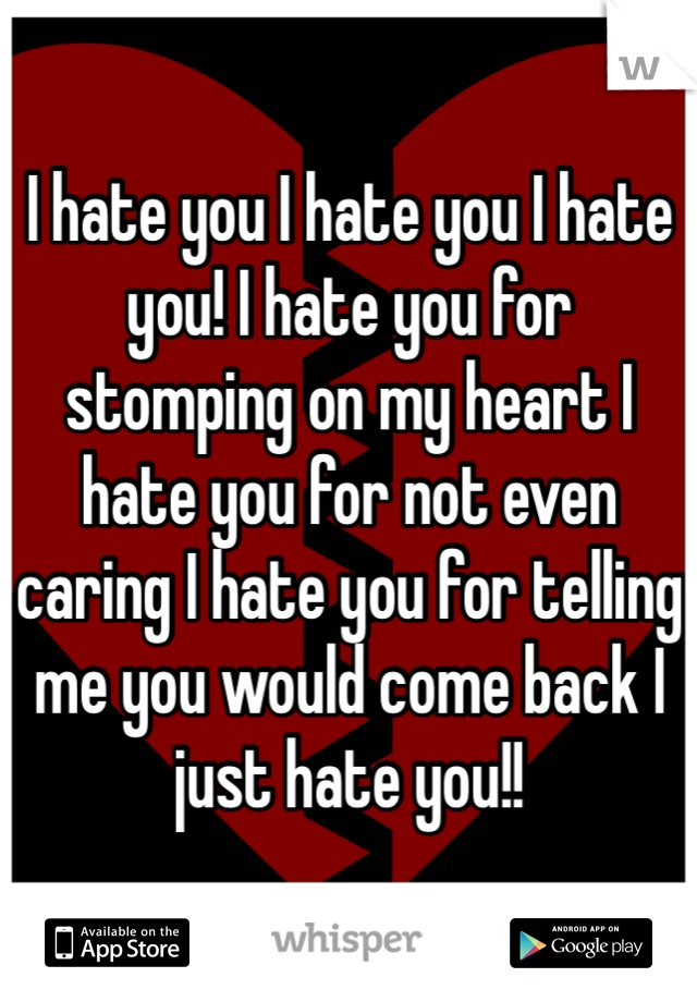 I hate you I hate you I hate you! I hate you for stomping on my heart I hate you for not even caring I hate you for telling me you would come back I just hate you!!