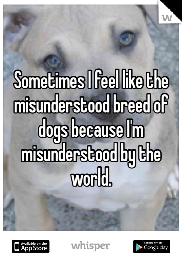 Sometimes I feel like the misunderstood breed of dogs because I'm misunderstood by the world.