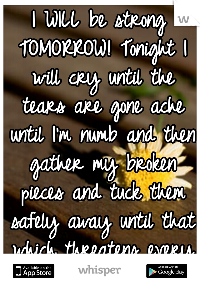 I WILL be strong TOMORROW! Tonight I will cry until the tears are gone ache until I'm numb and then gather my broken pieces and tuck them safely away until that which threatens every piece has passed!