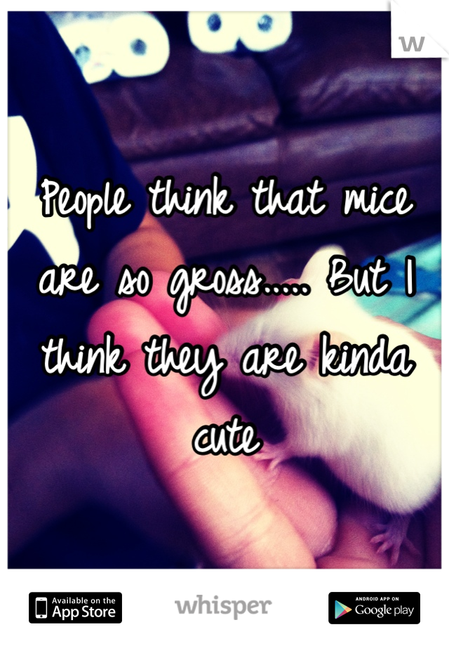 People think that mice are so gross..... But I think they are kinda cute