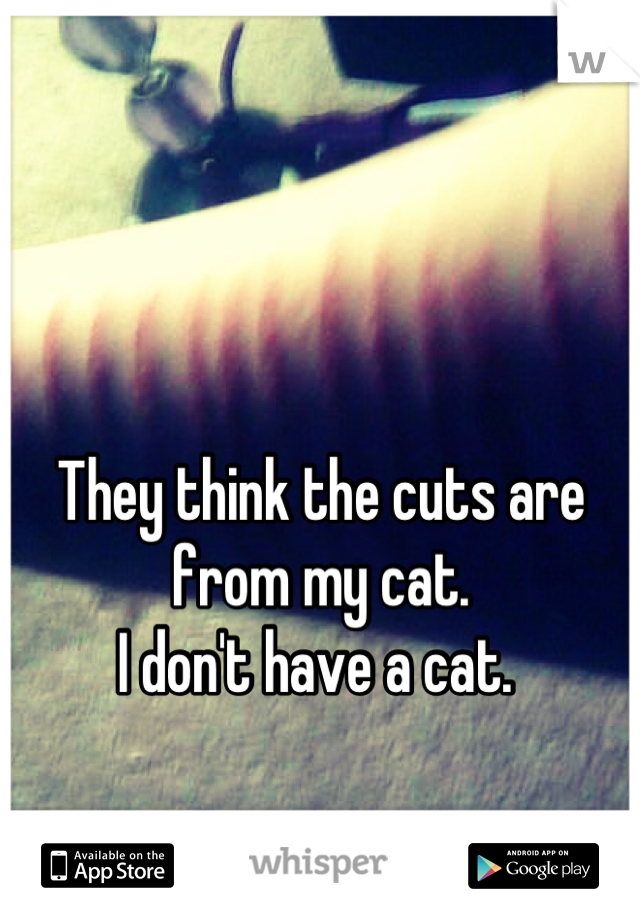 They think the cuts are from my cat.  I don't have a cat.
