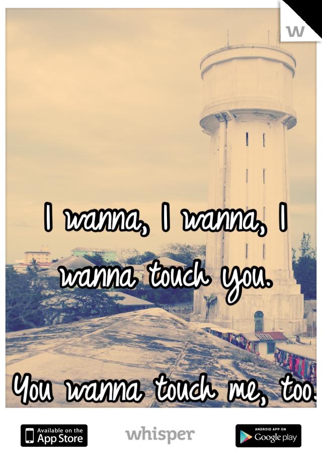 I wanna, I wanna, I wanna touch you.   You wanna touch me, too.