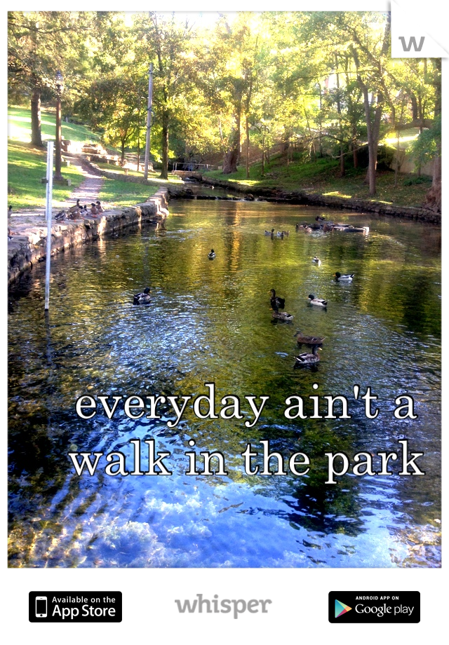 everyday ain't a walk in the park