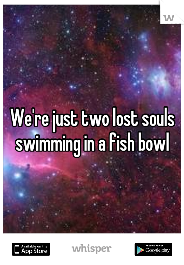 We're just two lost souls swimming in a fish bowl