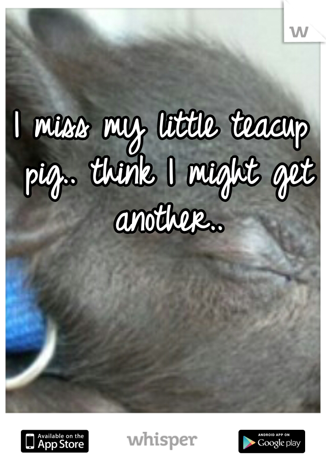 I miss my little teacup pig.. think I might get another..