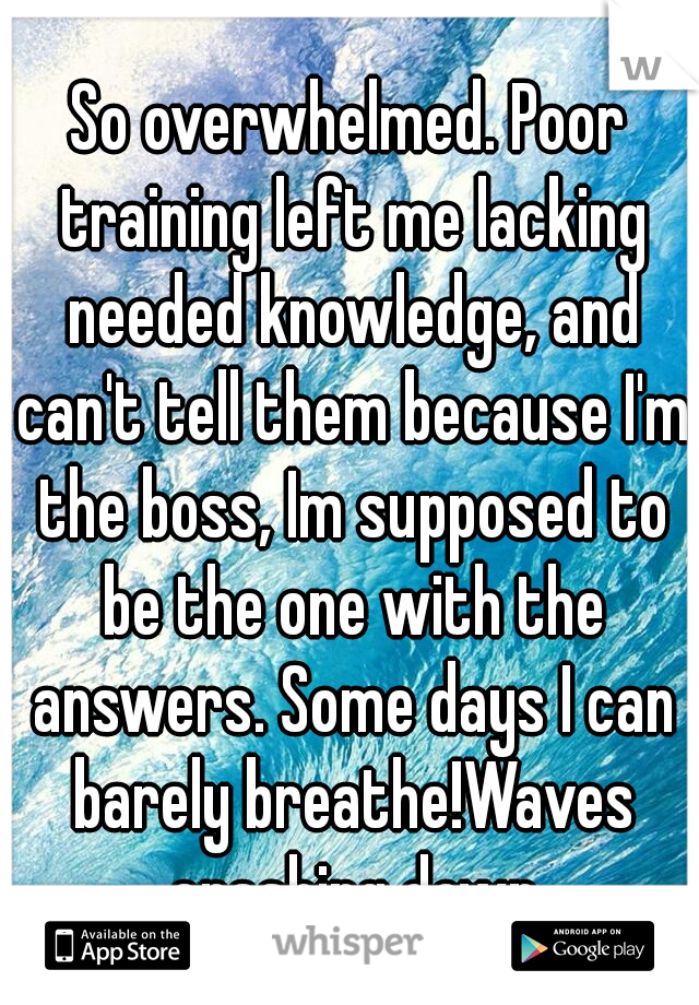 So overwhelmed. Poor training left me lacking needed knowledge, and can't tell them because I'm the boss, Im supposed to be the one with the answers. Some days I can barely breathe!Waves crashing down