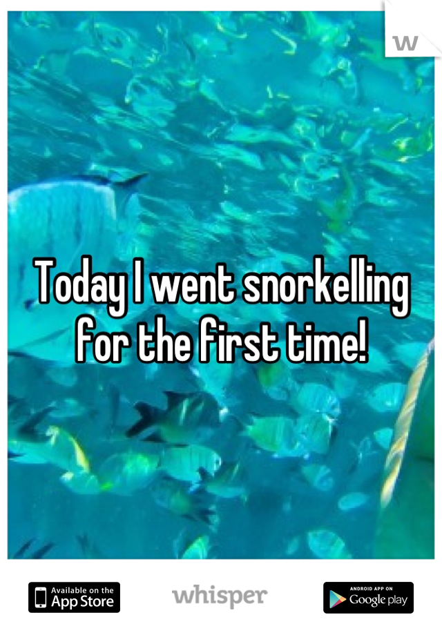 Today I went snorkelling for the first time!